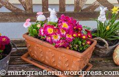 Garten März 10