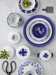 white and blue tableware