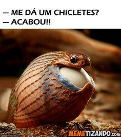 Memetizando | Acabando com a sua produtividade - Blog de Humor - Tirinhas - Gifs - Prints Engraçados - Videos engraçados e memes do Brasil. - Página 33