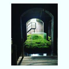 Culture souterraine #frederiksberg #cisternerne ##sambuichi #installation #contrast #contrasts