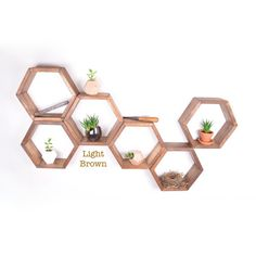 6 PACK Honeycomb shelves Hexagon Shelves Geodesic by GRAINandGRIT