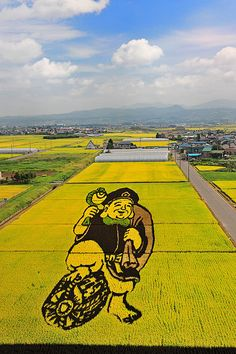 Rice field art in the small village of Inakadata, Japan (by Glenn Waters).