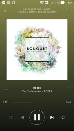 """The Chainsmokers, ROZES - Roses - Deep in my bones, I can feel you Take me back to a time only we knew Hideaway We could waste the night with an old film Smoke a little weed on my couch in the back room Hideaway. Say you'll never let me go.."""""""
