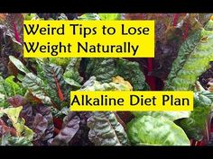 Weird Tips to Lose Weight Naturally