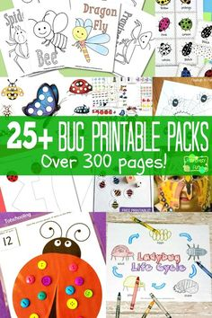 300 pages of FREE bug printables for kids.