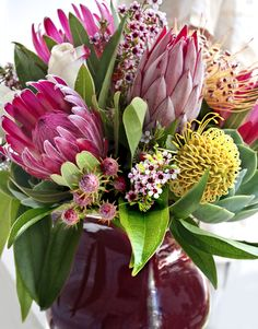exotic protea, succulents and wax flowers Wax Flowers, Exotic Flowers, Tropical Flowers, Love Flowers, Fresh Flowers, Beautiful Flowers, Wedding Flowers, Protea Wedding, Protea Bouquet