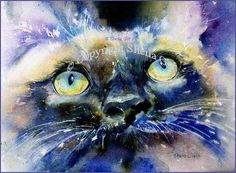 Love cat water colour
