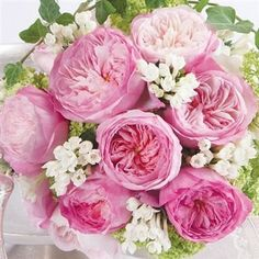 faux david austin roses - Google Search