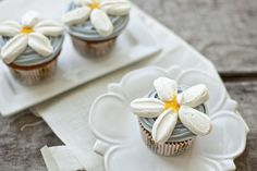 Springtime daisy cupcakes with a light, fluffy frosting and marshmallow petals Daisy Cupcakes, Spring Cupcakes, Easter Cupcakes, Fun Cupcakes, Fun Cookies, Cupcake Cookies, Pretty Cupcakes, Mocha Cupcakes, Gourmet Cupcakes