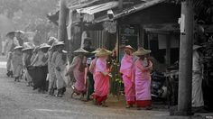 Buddhist nuns, Myanmar