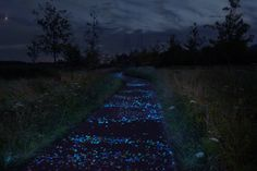 Path lined with stones that light up at night