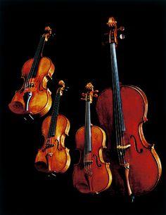 日本音楽財団  パガニーニ・クァルテット ●1680年製ヴァイオリン「パガニーニ」、●1727年製ヴァイオリン「パガニーニ」、●1731年製ヴィオラ「パガニーニ」、●1736年製チェロ「パガニーニ」