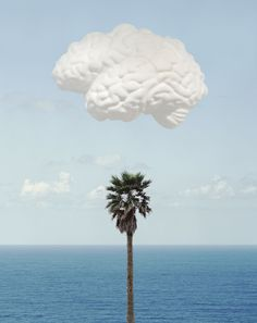 Brain/Cloud (With Seascape and Palm Tree) , 2009  by John Baldessari