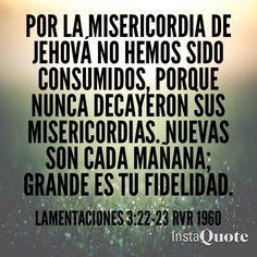 Por la misericordia de Jehová no hemos sido consumidos, porque nunca decayeron sus misericordias. Nuevas son cada mañana; grande es tu fidelidad. (Lamentaciones 3:22-23 RVR1960)