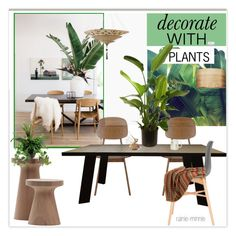 """Decorate with plants"" by rainie-minnie ❤ liked on Polyvore featuring interior, interiors, interior design, home, home decor, interior decorating, Sebastian Professional, Improvements and HiEnd Accents"