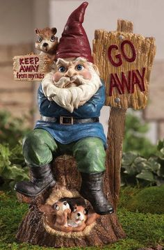 New Keep Away from My Nuts Gnome Squirrel Garden Statue Outdoor Yard Decor Funny Garden Gnomes, Yard Gnomes, Funny Gnomes, Gnome Garden, Gnome Statues, Garden Statues, Yard Sculptures, Gnome House, Farm House