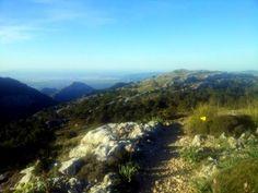 :-) Neuer #Laufbericht online: #Ultra #Mallorca Serra de Tramuntana vom 19.04. - 20.04.2014 - Ein Brief - 112 km und 4450 Höhenmeter - Laufbericht von Thomas Eller http://laufspass.com/laufberichte/2014/mallorca-ultra-2014.htm
