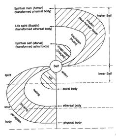 Levels of Self - Rudolph Steiner Rudolf Steiner, Spirit Science, Knowledge And Wisdom, Book Of Shadows, Spiritual Awakening, Sacred Geometry, Physics, Mindfulness, Consciousness