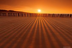 Shadow and Light | von Harold vd Berge