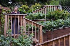great article on San Francisco neighborhood stairway with edible plantings