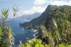 Madeira, Island of flowers #travel #Portugal