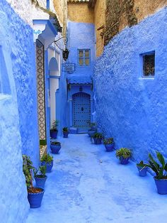 Chefchaouen, Morocco This palette of blues makes me feel as though I am walking in a dream.