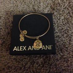 Alex and Ani sand dollar bangle Gold Alex & Ani Jewelry Bracelets