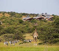 Magisches #Afrika! Safari Luxus-Camp in Kenia.