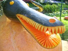 Cushaw squash carved into alligator head..love it