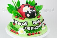 ladybird, ladybug cake, tort biedronka, www.rogwojskiego.pl
