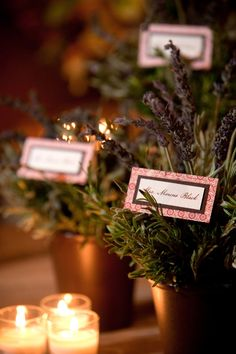 Potted plants as place card holders.  Photo by Simple Moments Photography.  www.wedsociety.com  #wedding #green