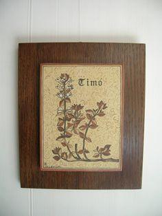 Socarrat Timó