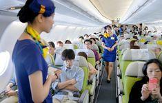 Military Police, Cabin Crew, Flight Attendant, Japanese Girl, Skymark Airlines, Mini Skirts, Medical, Japan Girl, Medicine