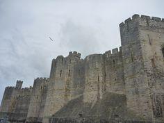 Caernafon Castle Wales May 2013 Wales, Mount Rushmore, Castle, Mountains, Nature, Travel, Naturaleza, Viajes, Welsh Country