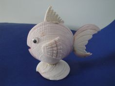"""6"""" Hand Made and Curving Sea Shell Fish Nautical Home Decor With Shinny Look"""