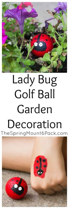 Looking for a fun garden decoration that you can make with the kids? These lady bug golf balls are easy to make and so cute.