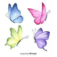 Excellent collection of butterflies Vector Butterfly Drawing, Butterfly Watercolor, Floral Watercolor, Drawings Of Butterflies, Butterfly Painting Easy, Butterfly Stencil, Blue Butterfly, Fabric Painting, Watercolour Painting