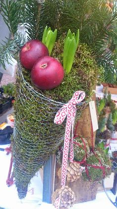 Wired cornucopia of bulbs and apples...for the Christmas kitchen!