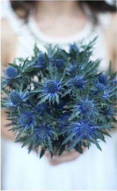 ✿♥♥✿ hiver ♥ bouquet mariée chardon bleu ✿♥♥✿
