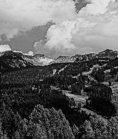Whistler #photography #art #vincemancuso