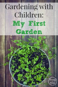 Allowing children to plant seeds, helps them take ownership. Gardening with children allows them to learn where food comes from and learn responsibility.