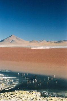 Le Salar de Uyuni  le plus grand désert de sel du monde  2Tout2Rien