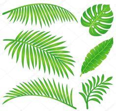 Set of summer tropical leaves illustration.