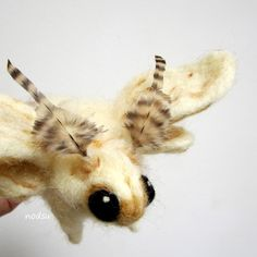 Moth sculpture, needle felted bug, Soft sculpture, venezuelan poodle moth MADE to ORDER by nodsu on Etsy Wet Felting, Needle Felting, Venezuelan Poodle Moth, Lesage, Felt Art, Soft Sculpture, Felt Animals, Fabric Art, Felt Crafts