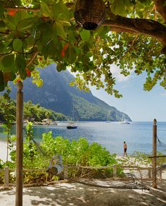 1000 Images About St Lucia 100 Best Photos On Pinterest