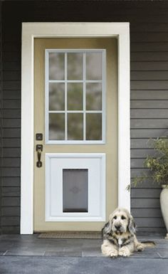 Custom Doors With Doggie Door Jeld Wen Steel And Fiberglass Doors With Installed Pet Door