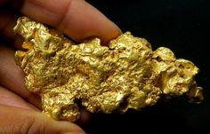 Solid Gold Berjangka Portal News