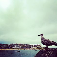 St. Ives, UK