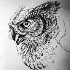 owl ink via /r/Art. Owl Tattoo Drawings, Tattoo Sketches, Drawing Sketches, Art Drawings, Tattoo Owl, Sketch Tattoo Design, Owl Tattoo Design, Owl Art, Bird Art