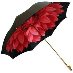 The CUTEST umbrella!
